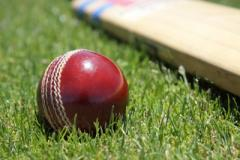 Cricket: Alderley's recovery not enough against champions