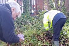 Call for plant donations as work continues to make the village bloom