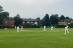 Cricket: Alderley rise to second after Cheadle demolition