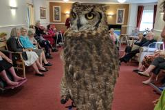 Residents of local care home get flying visit from birds of prey