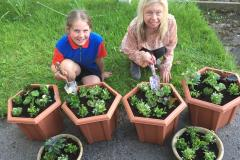 Guides help make village bloom