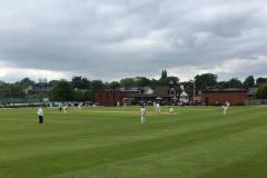 Cricket: Alderley fall just short against Bramhall