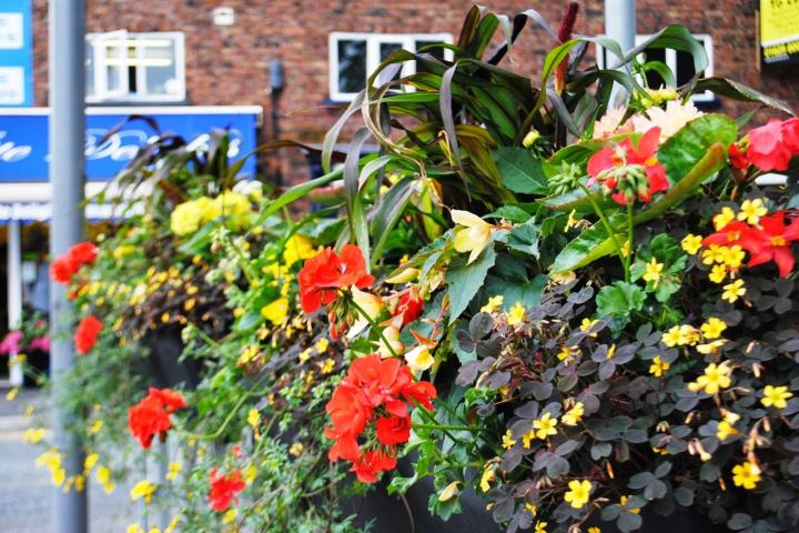 Parish Council agrees to purchase planters and hanging baskets
